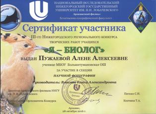 http://btums.ucoz.ru/papka/Fail/Foto/gramoti/sertifikaty-0003.jpg